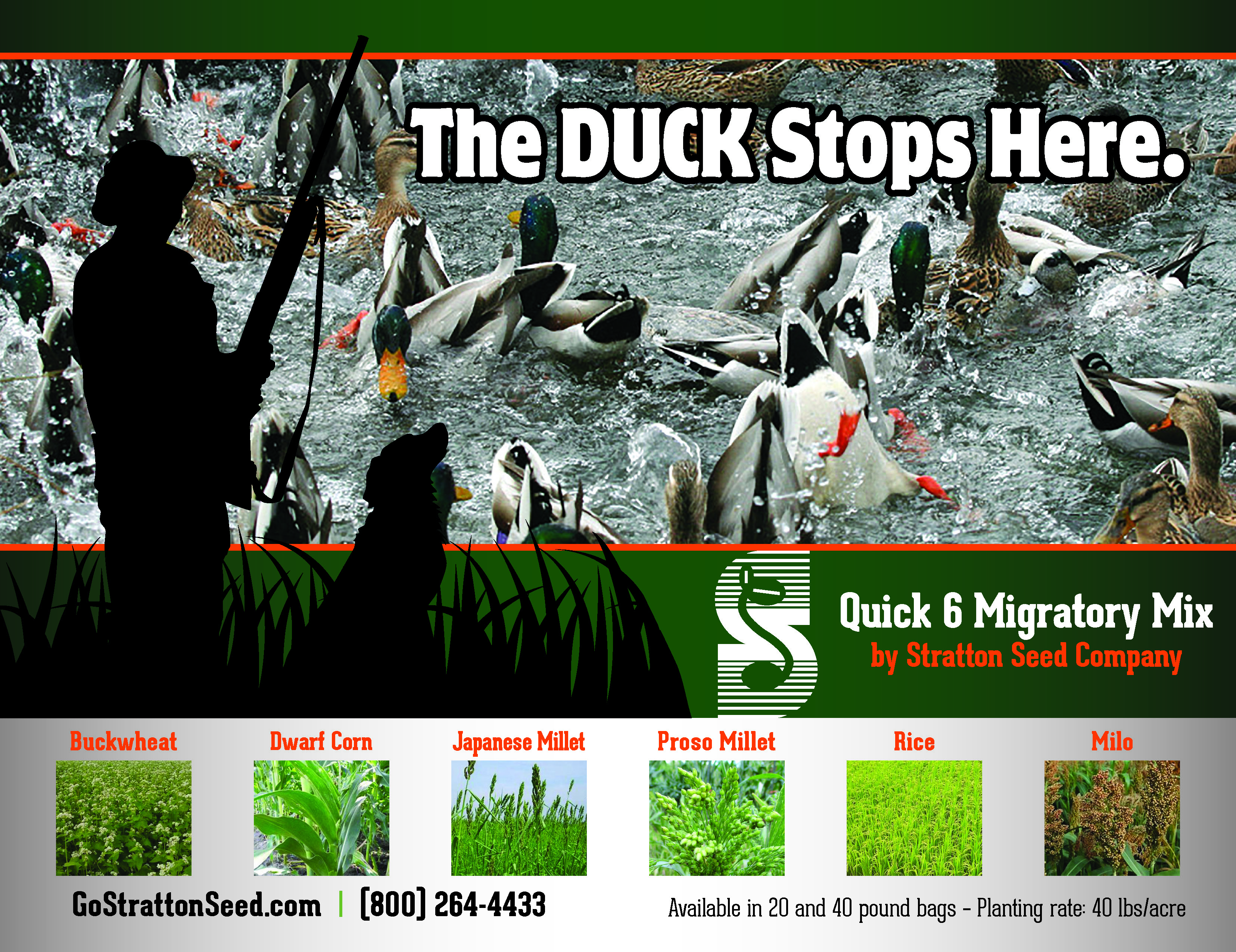 New Product: Quick 6 Migratory Mix